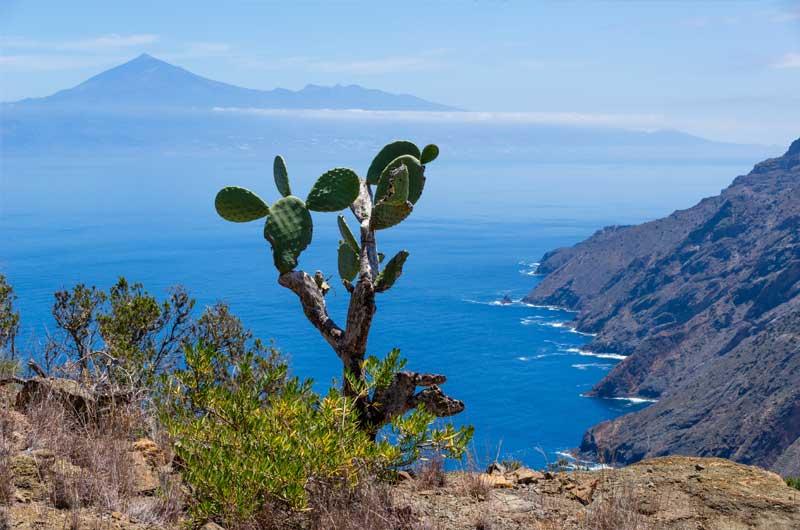 Teide La Gomera Tagestour