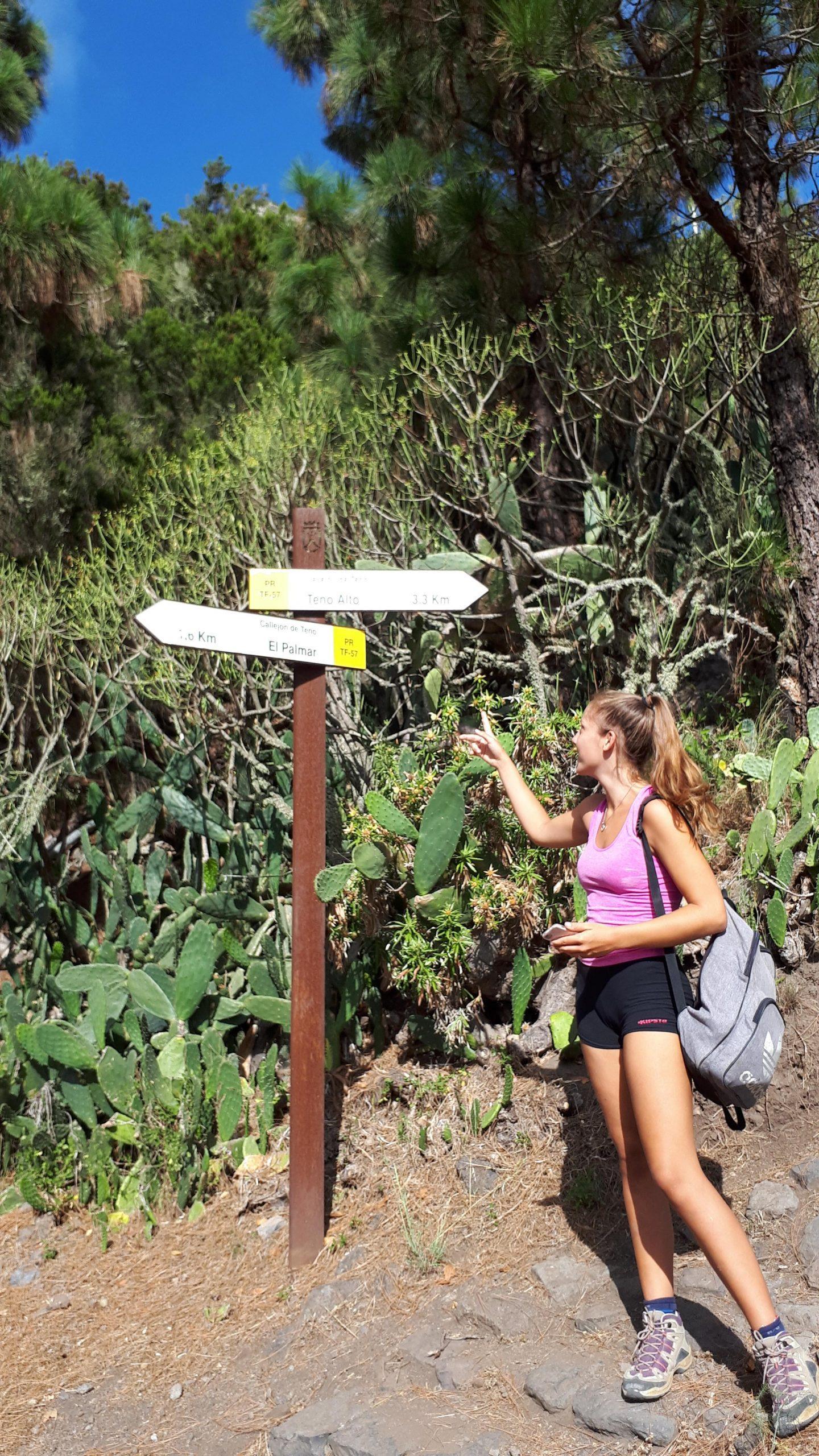 Camino Weg nach Teno Alto
