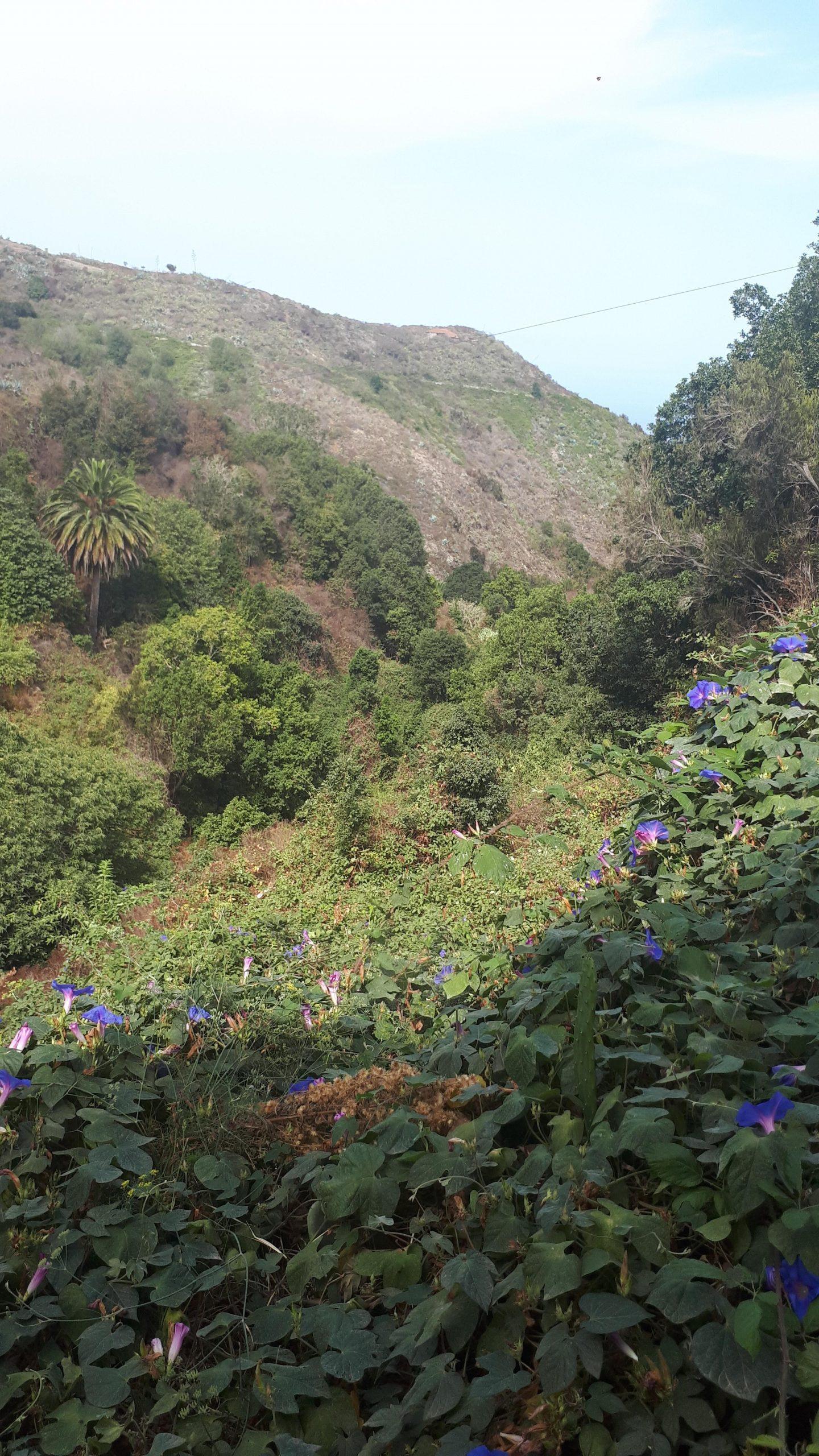 Start Wanderung Tierra del Trigo