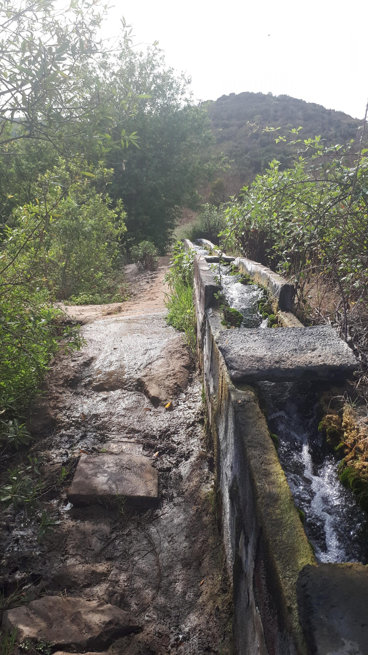 Wassergalerie Tierra del Trigo