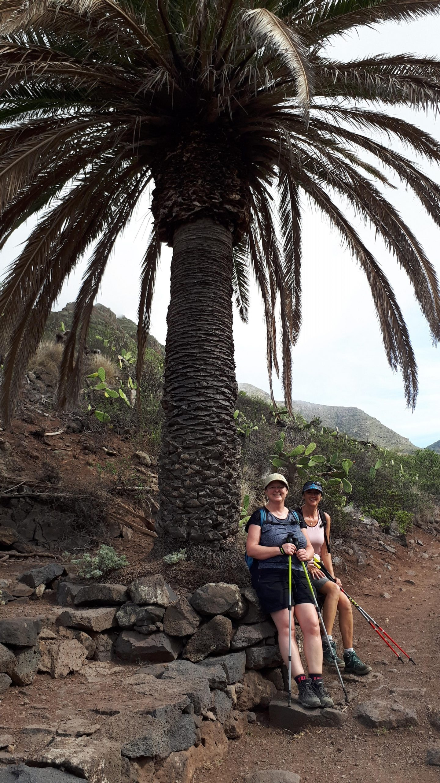 Ende der Wanderung Tegueste Bajamar