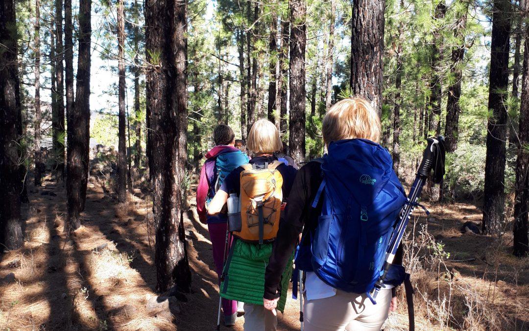 Wanderung um den Chinyero