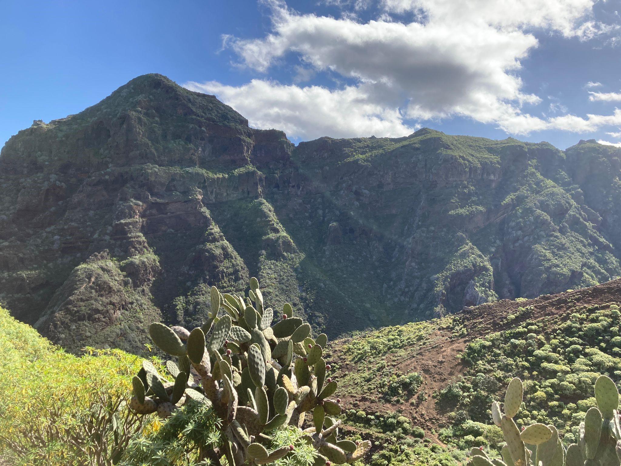 Wanderung Punta del Hidalgo Batan