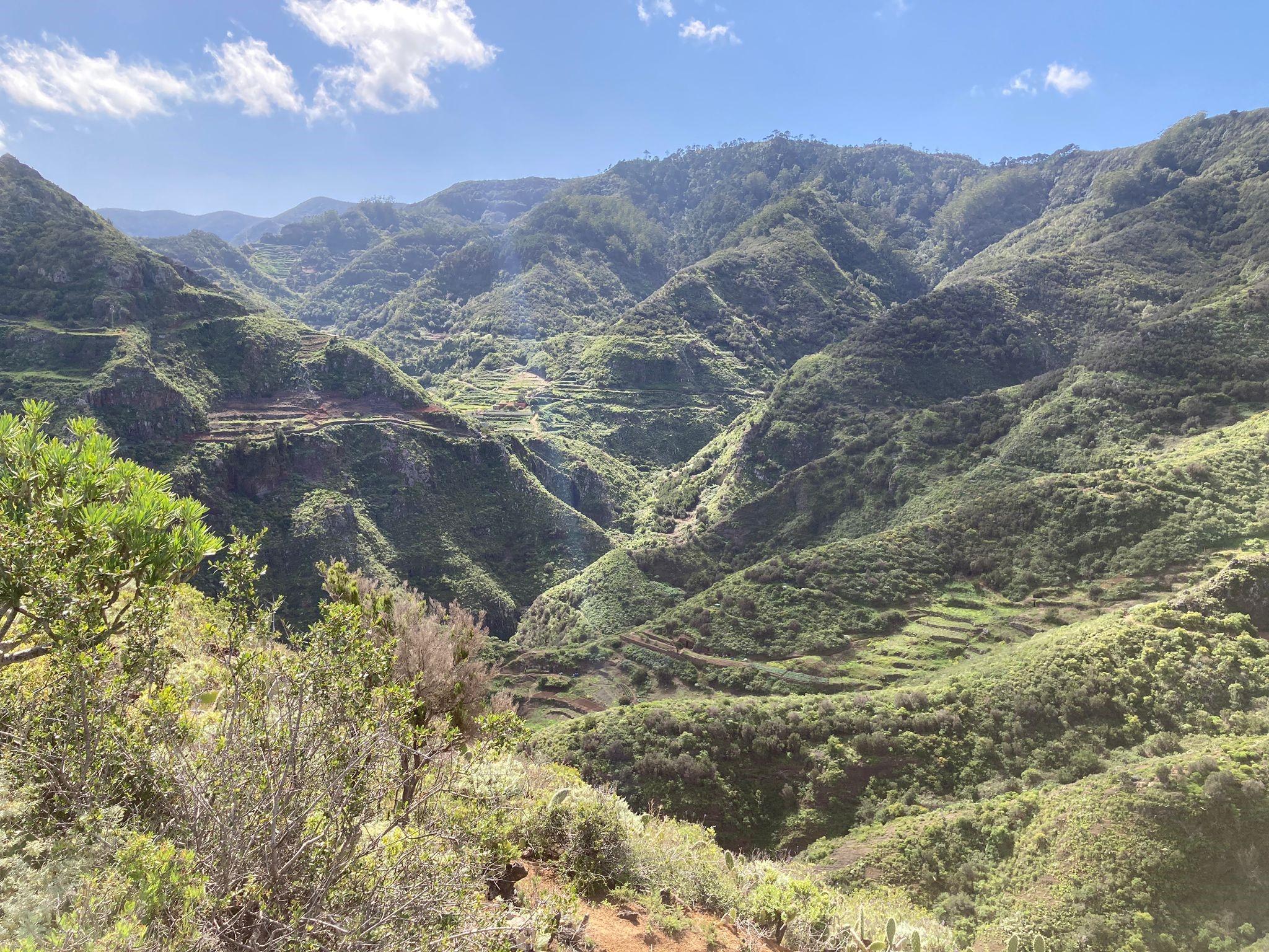 Wanderung Punta del Hidalgo Batán