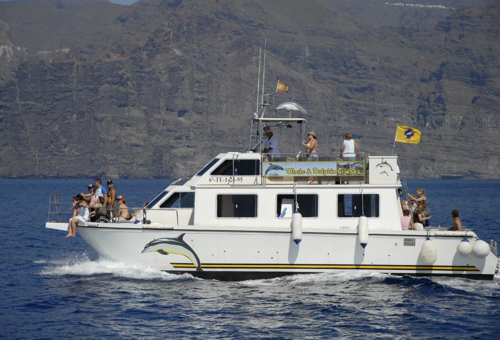 Delfintour mit der Nashira Uno